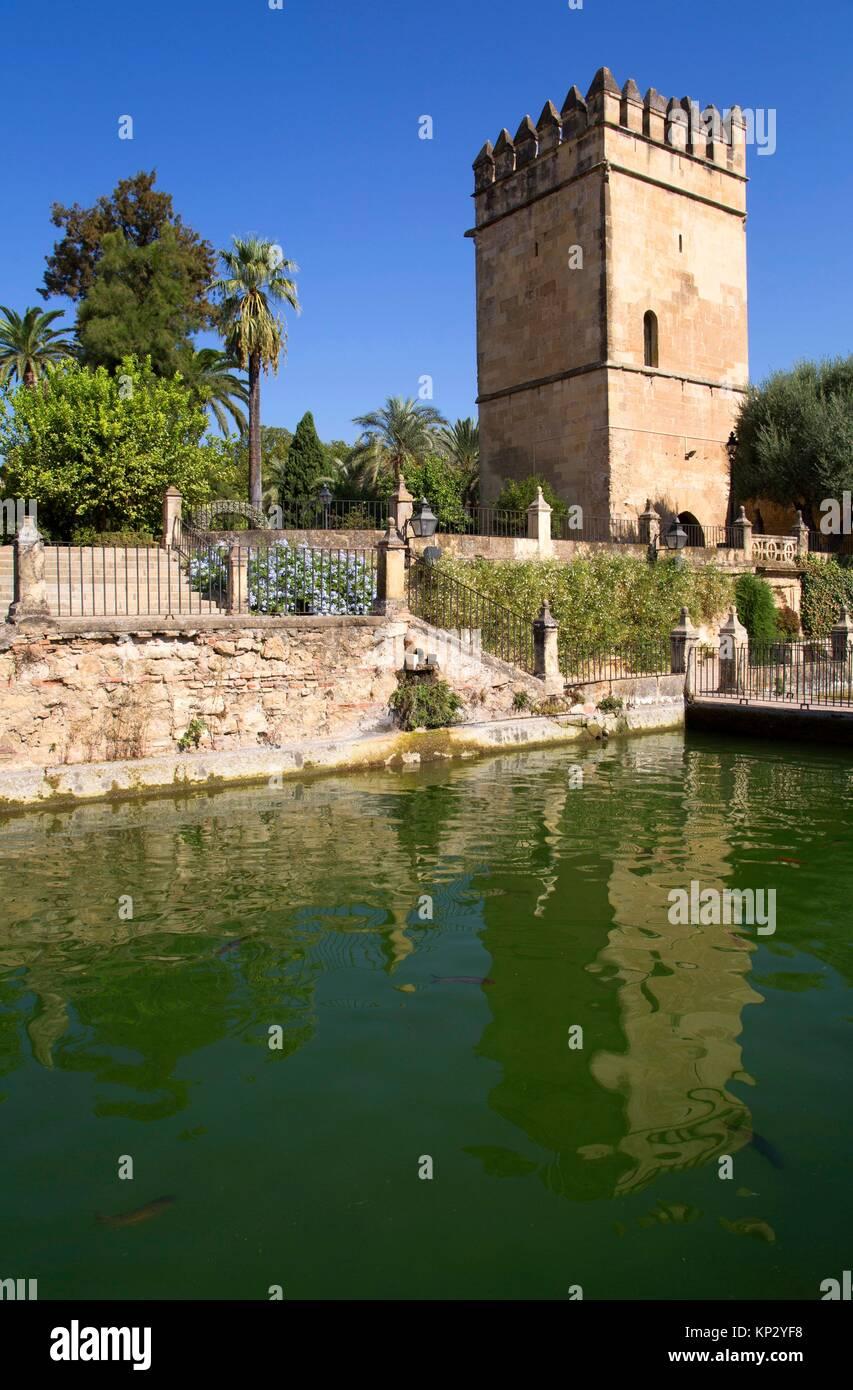 Piscinas en cordoba espaa top piscina cubierta segovia for Piscina municipal los cristianos