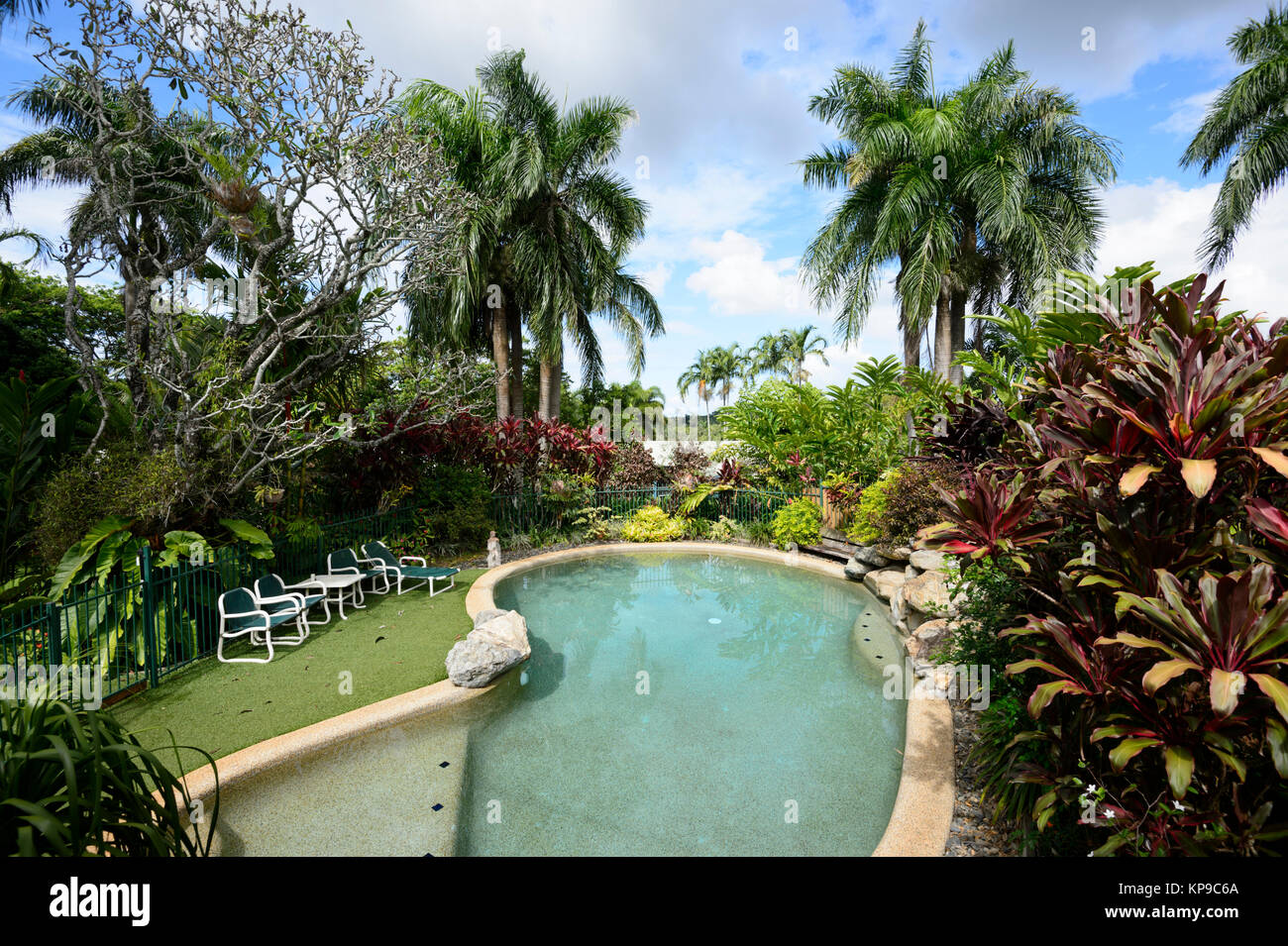 Piscina rodeada de exuberante vegetación tropical en el trópico húmedo, Cairns, Far North Queensland, Imagen De Stock