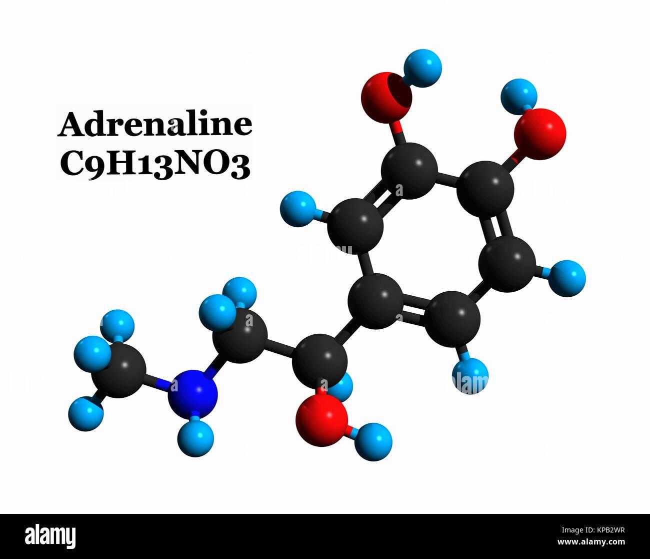 Estructura Molecular De Adrenalina Epinefrina Una Hormona