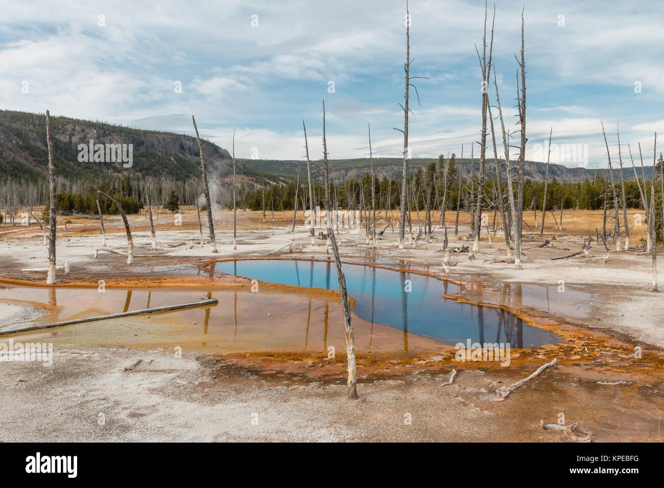 Opalescentes Piscina en el Parque Nacional Yellowstone, Wyoming. Foto de stock