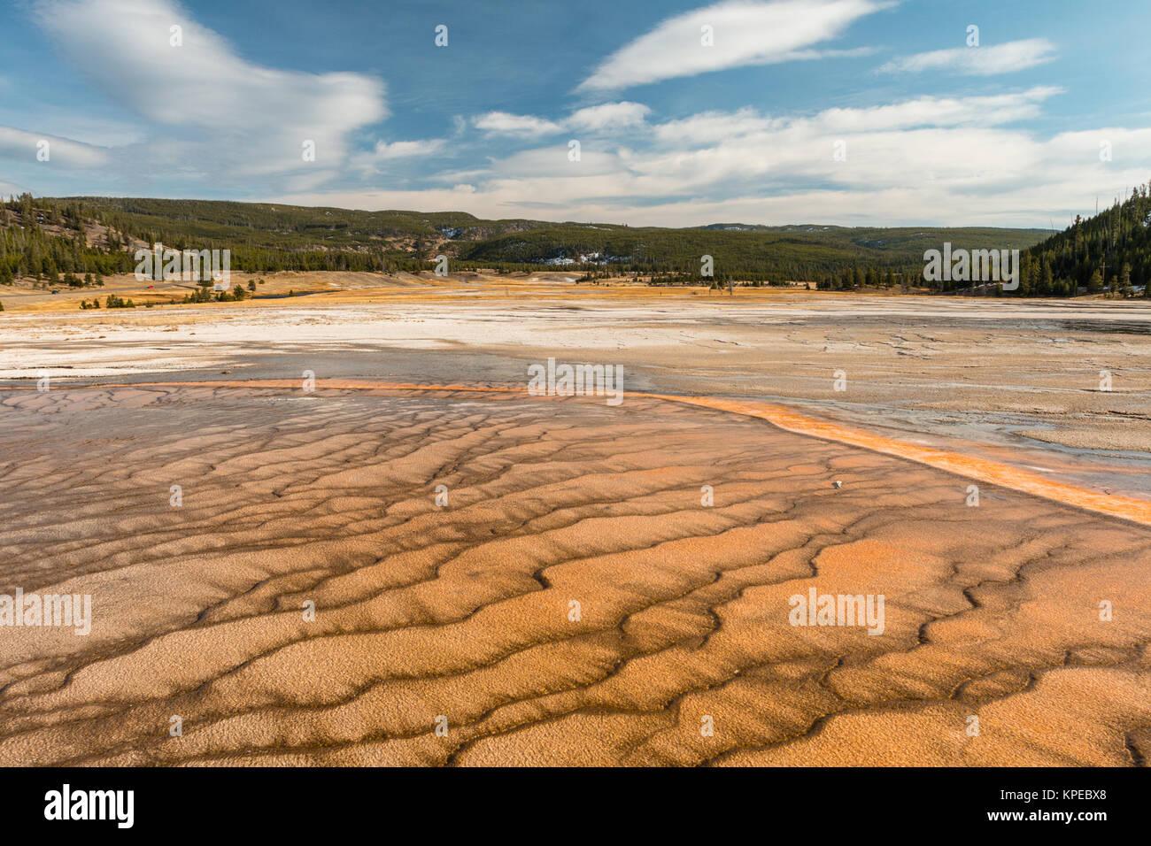 Mat bacteriana en Grand Prismatic Hot Spring en el Parque Nacional Yellowstone, Wyoming Foto de stock