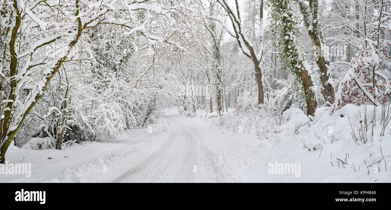 País cubierto de nieve carretera cerca de Snowshill village en diciembre. Snowshill, Cotswolds, Gloucestershire, Inglaterra Foto de stock