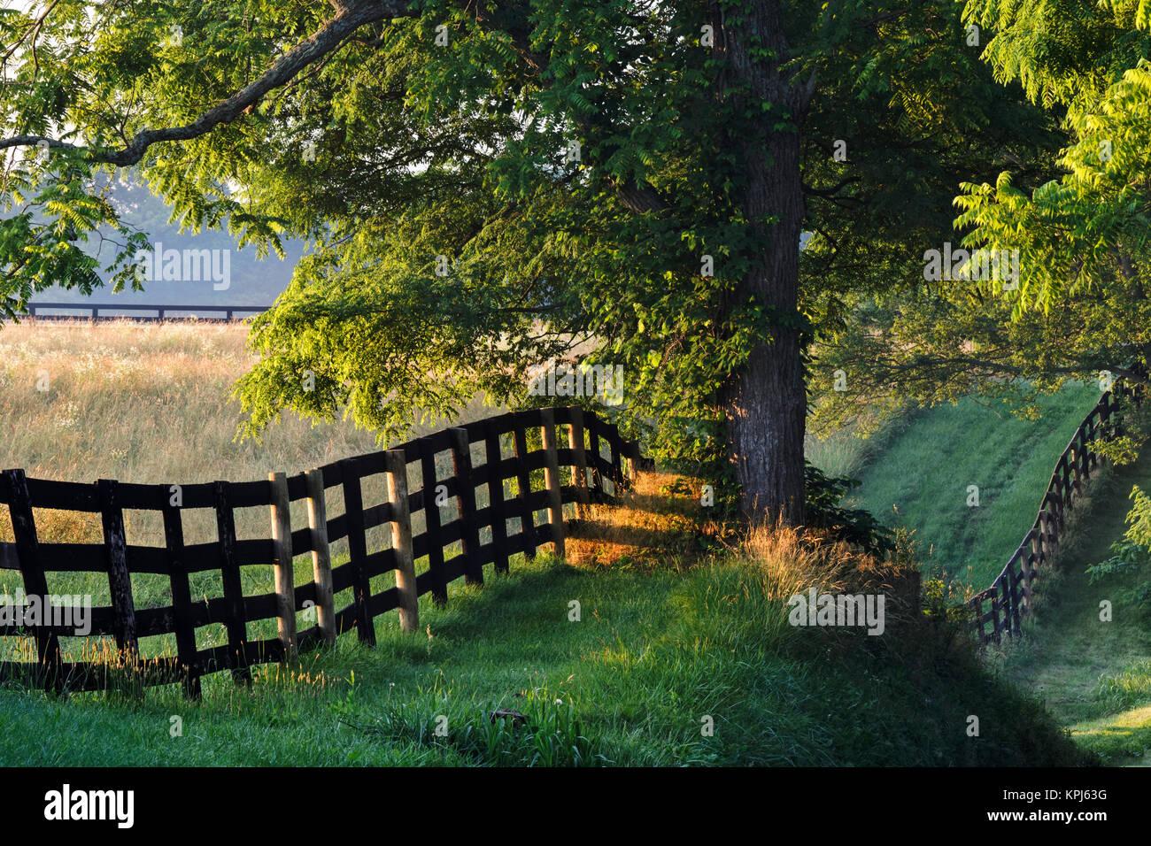 Amaneceres Al-amanecer-valla-de-granja-del-condado-de-oldham-kentucky-kpj63g