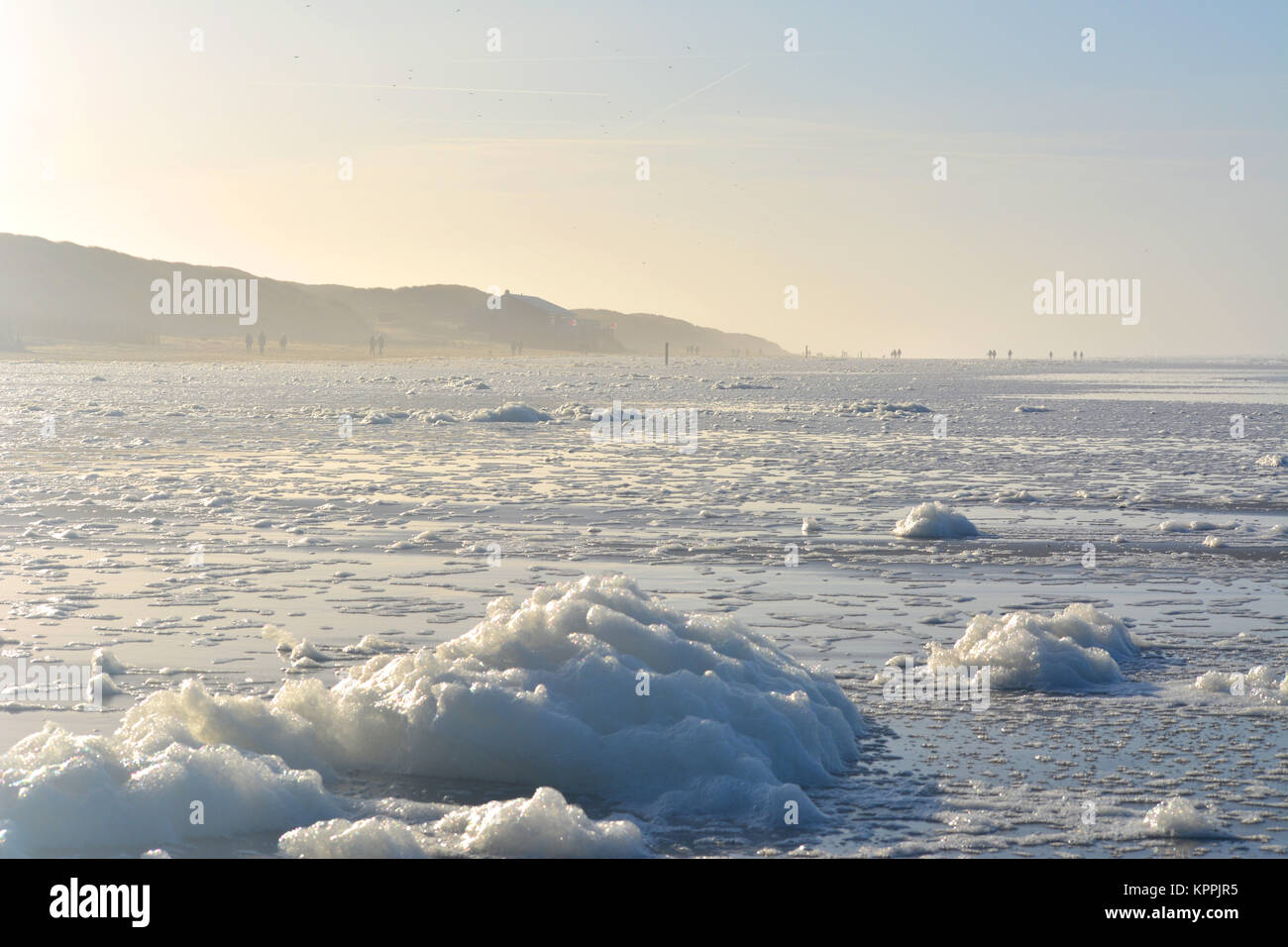 La espuma en la playa al atardecer sobre el mar del Norte, en Texel, Holanda Europa Foto de stock