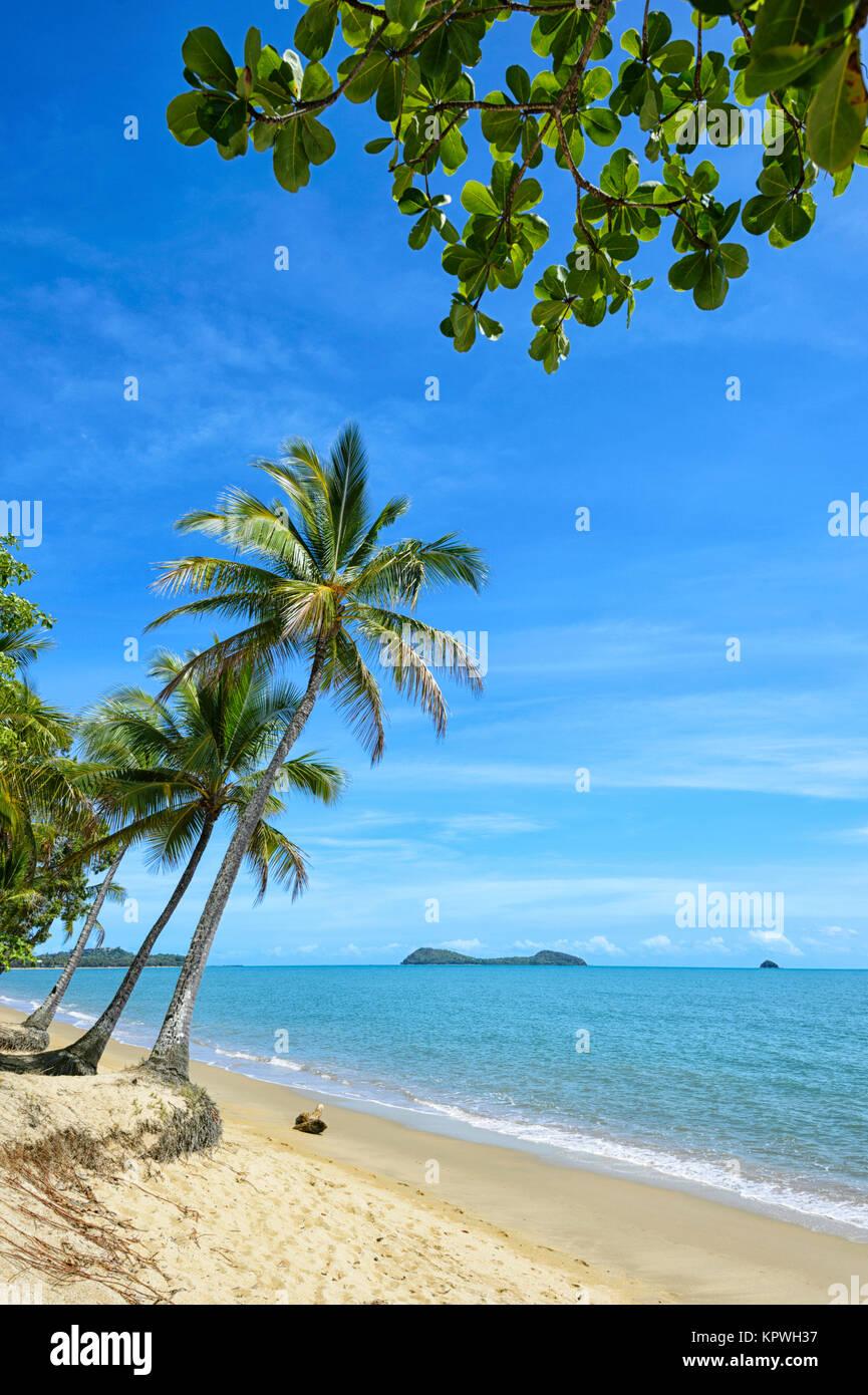 Playa de arena con palmeras de Clifton Beach, playas del norte de Cairns, el suburbio de Far North Queensland, FNQ, Imagen De Stock