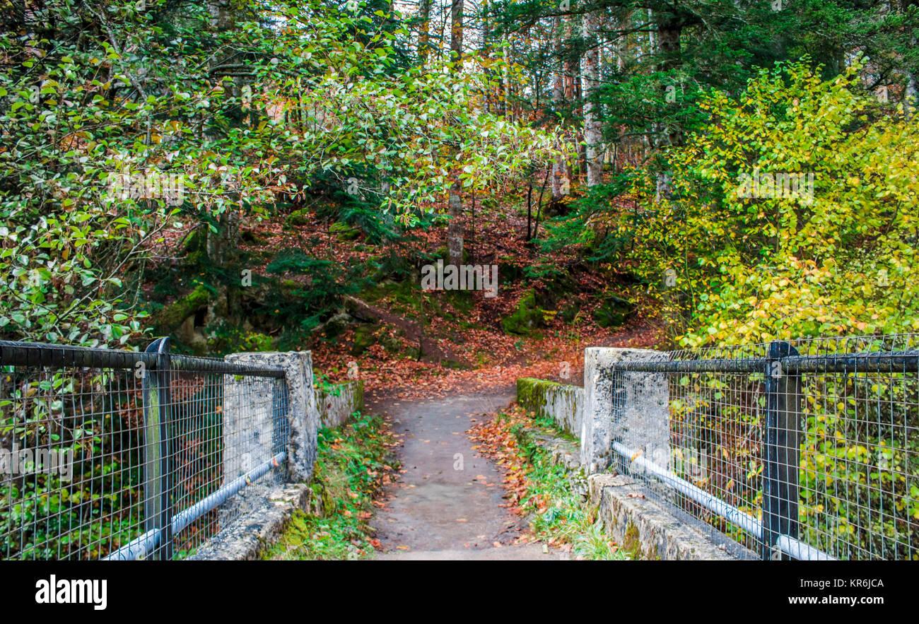 Irati puente Imagen De Stock