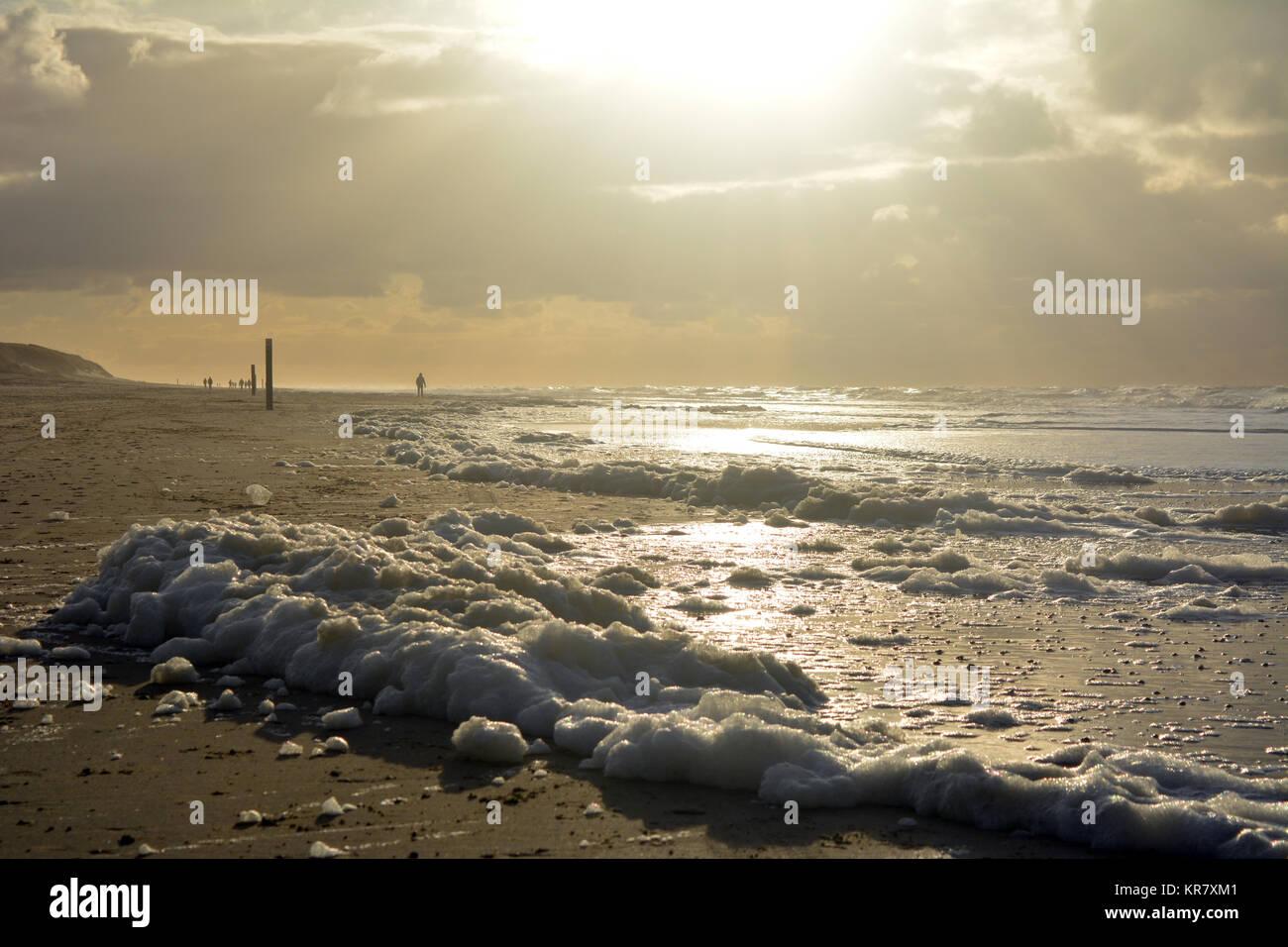 La espuma en la playa al atardecer en el mar del Norte, la isla Texel, Países Bajos de Europa. Foto de stock