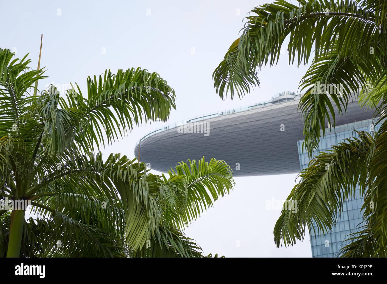 Marina Bay Sands Hotel y SkyPark en Singapur, enmarcadas por hojas ...