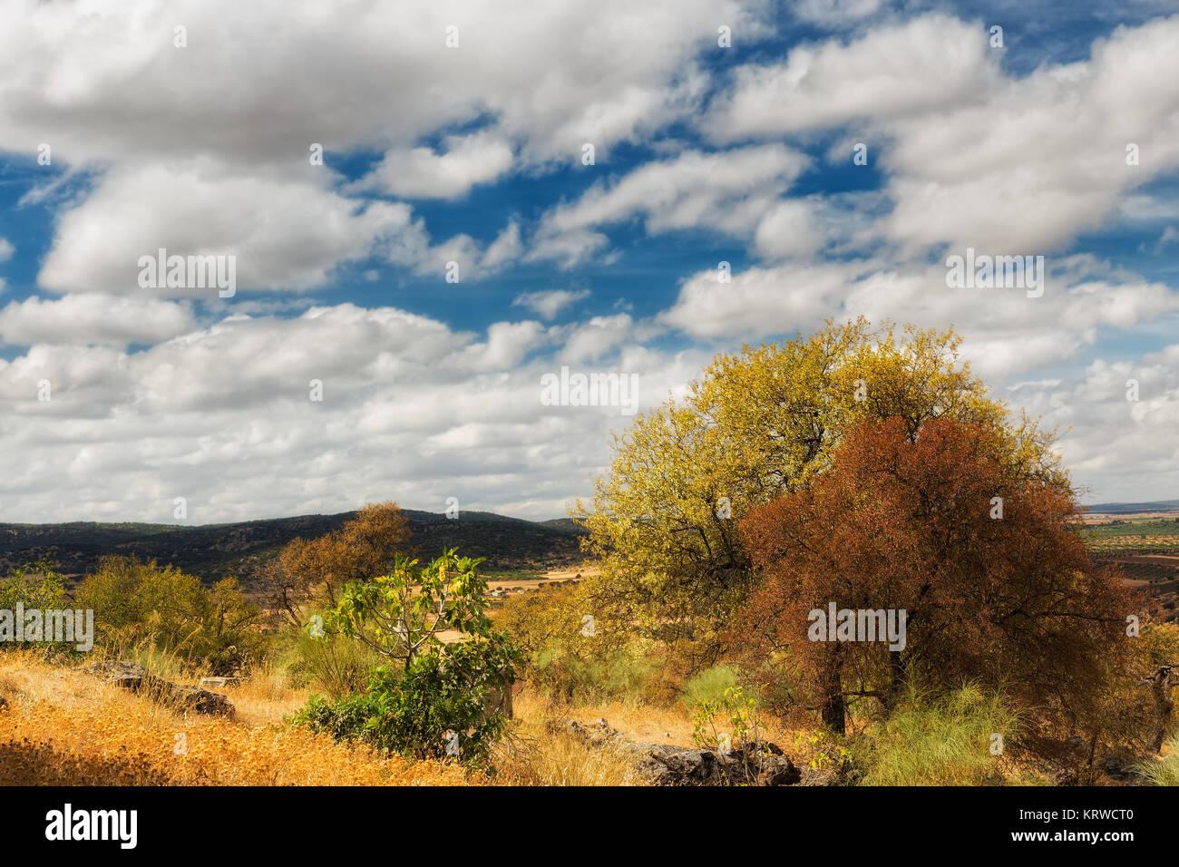 Paisaje con glamour, cerca de Nogales. España. Imagen De Stock