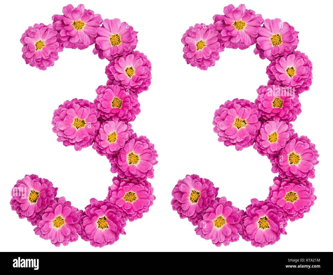 Número arábigo 33, treinta y tres, de las flores de crisantemo, aislado sobre fondo blanco. Imagen De Stock