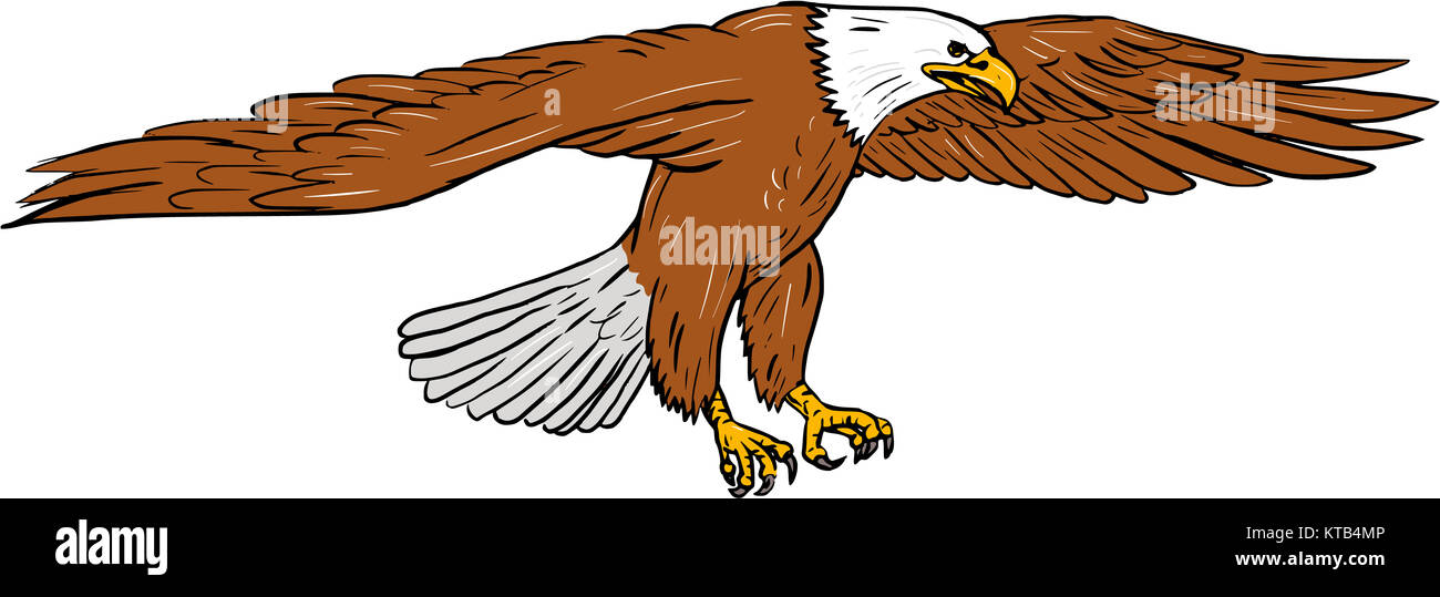 Eagle Drawing Imágenes De Stock & Eagle Drawing Fotos De Stock - Alamy