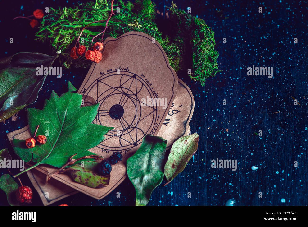 Pentagram dibujo en un pergamino con ingredientes de una poción mágica escena. Moderno concepto de brujería Imagen De Stock