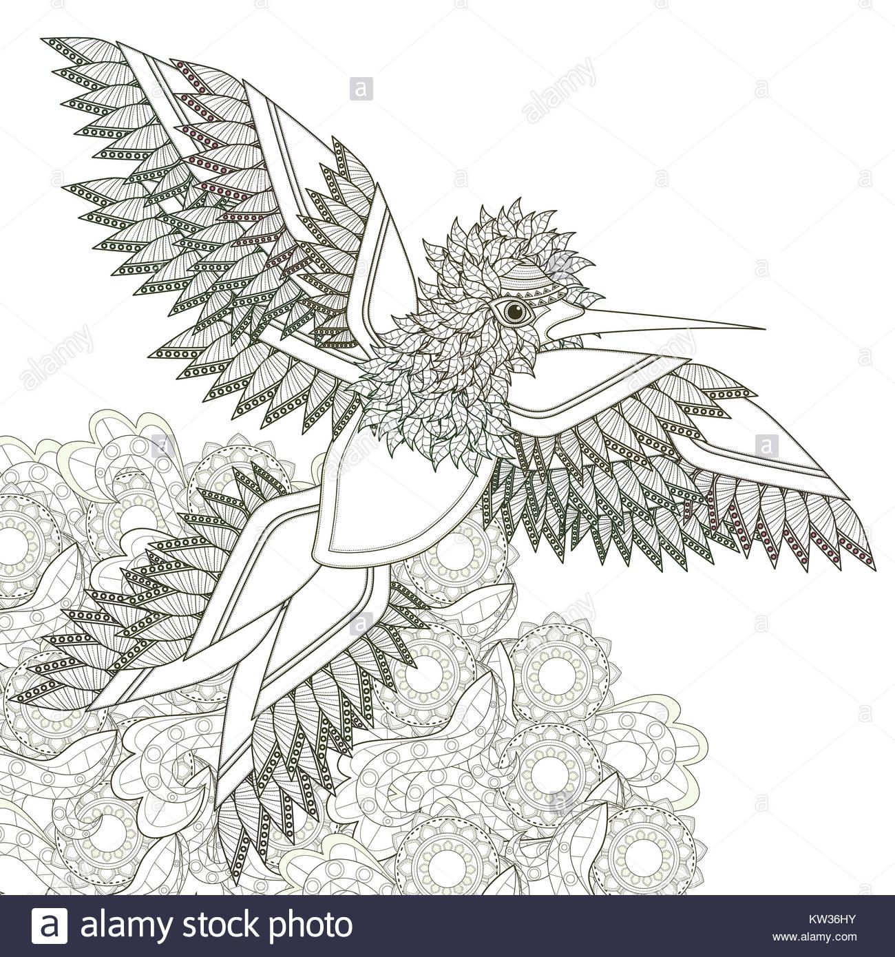 Elegante diseño de páginas para colorear de aves volando en un ...