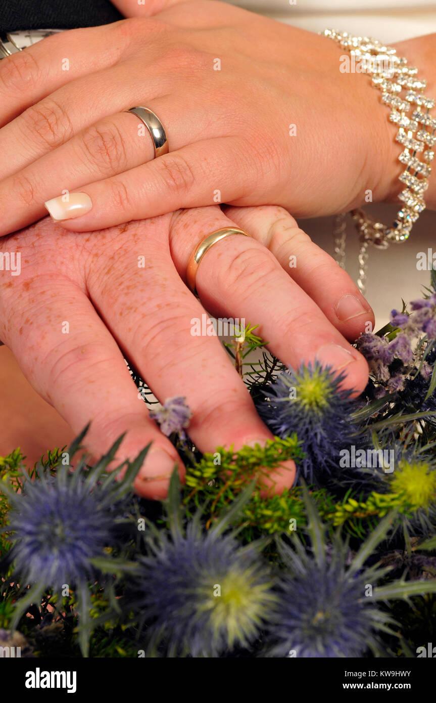 61a10de95 Las manos de los novios recién casados mostrando sus anillos de boda en una  cerca. Recién casados cogidos de la mano con Wedding Bands en mostrar