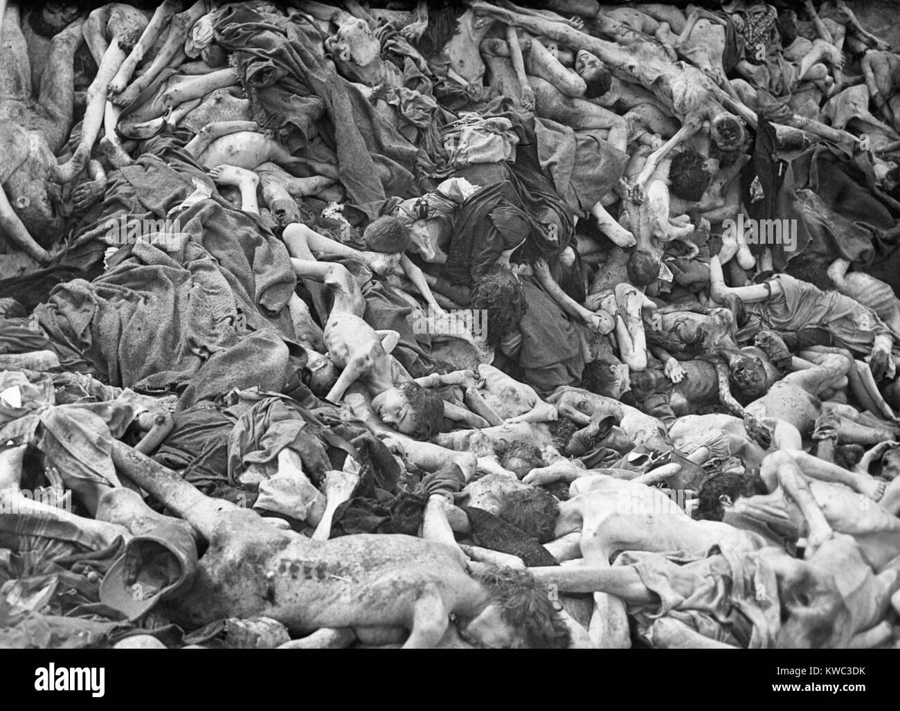 Fosa común de las víctimas del Campo de Concentración de Belsen Nazi-German, abril de 1945. En las semanas antes Foto de stock