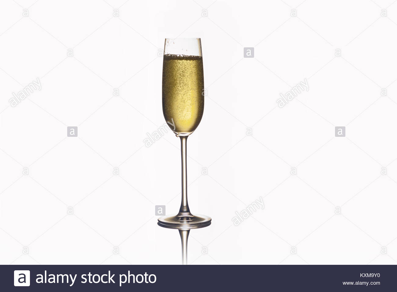 Una copa de champán, aislado fondo blanco composición Foto de stock