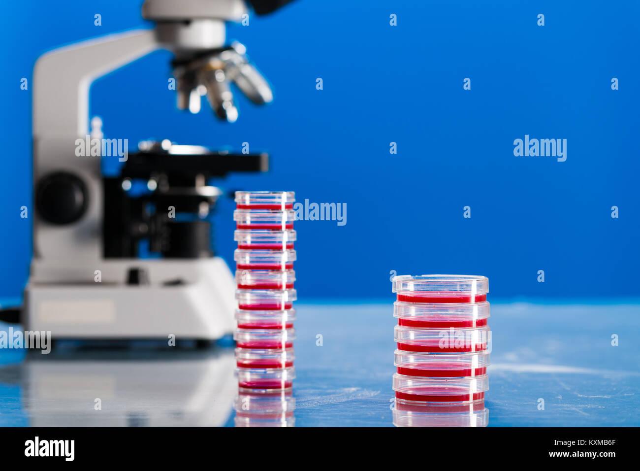 Identificación de microbios patógenos y virus. Foto de stock
