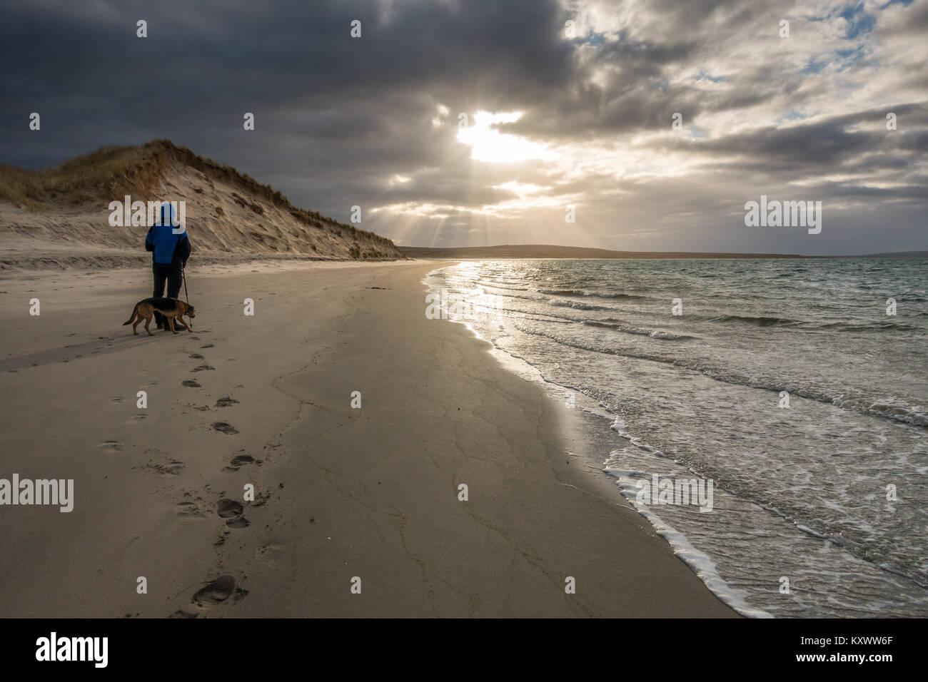 Iluminado por las dunas de arena en la playa en Loch Gruinart Killinallan dramáticos de invierno bajo la luz solar con walker persona y perro, la Isla de Islay, Escocia Foto de stock
