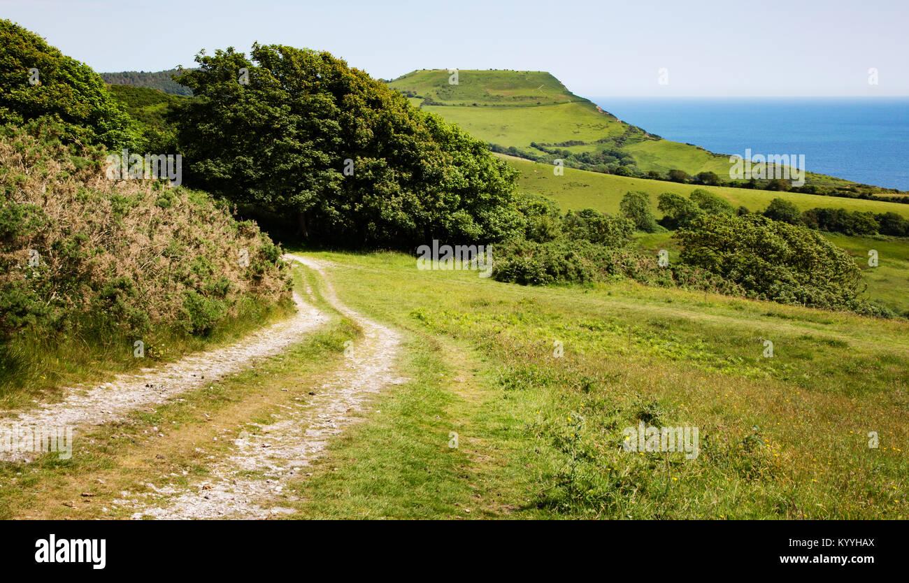 Vía cerca Charmouth en Dorset hacia Golden Tape el punto más alto de la sección sur de la costa sur oeste de Path UK Foto de stock