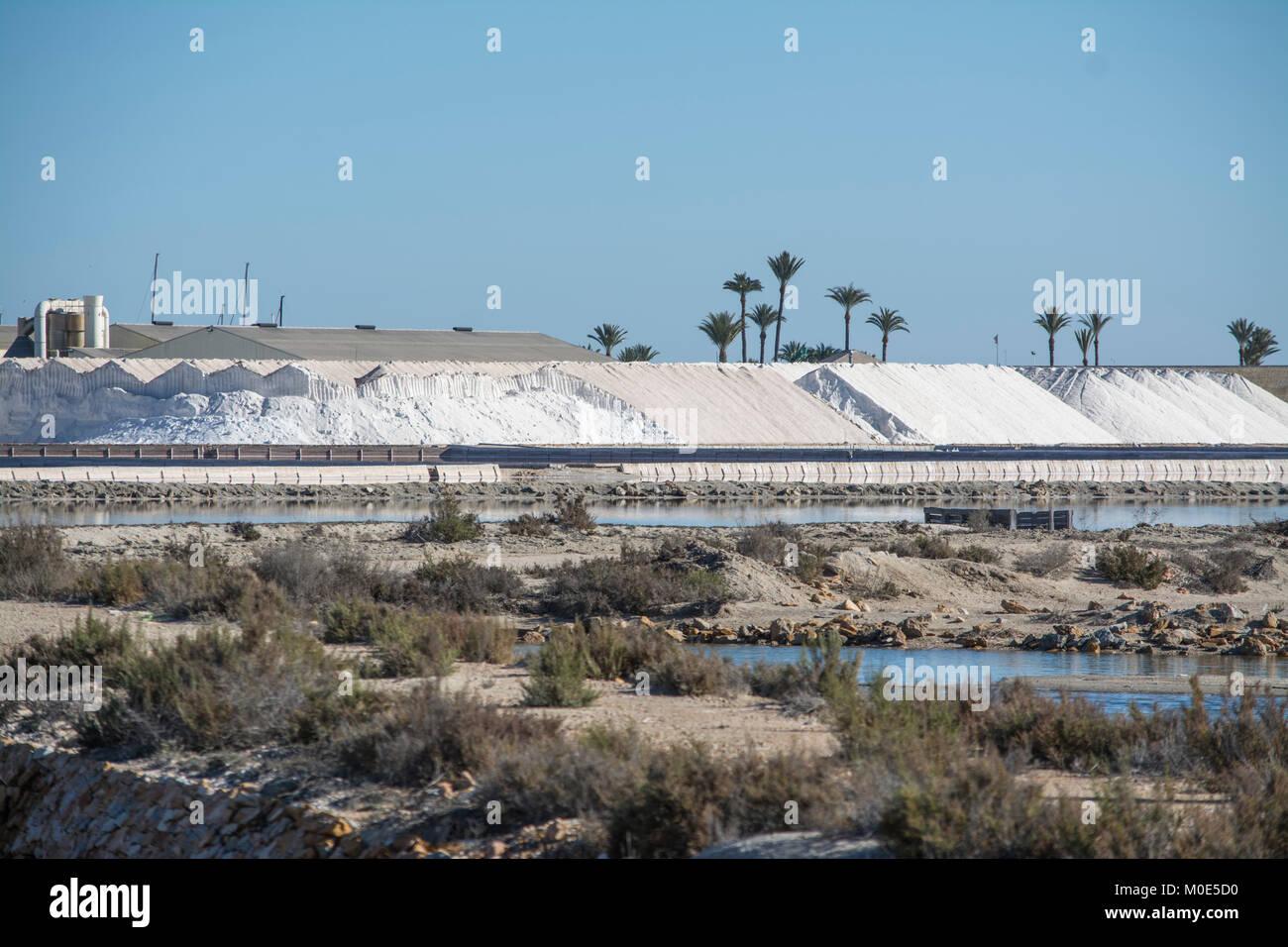 Los montones de sal en San Pedro de Pinatar vista desde Lo Pagán en Murcia, España Imagen De Stock