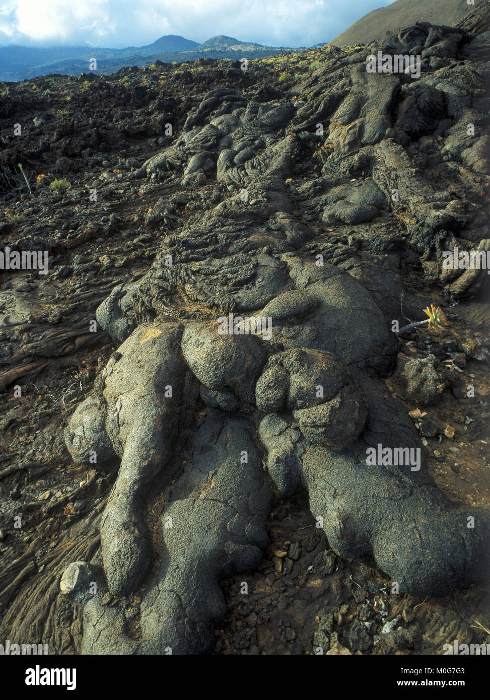Lavas cordadas en el malpaís de Los Lajiales, El Hierro, Islas Canarias, España, Europa Foto de stock