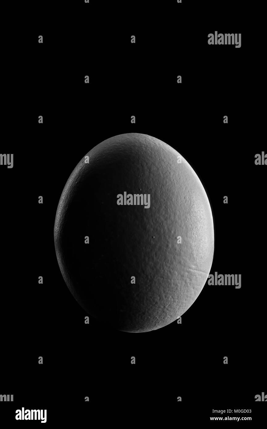 Primera fase de cuarto de luna show de huevo en la noche con ...