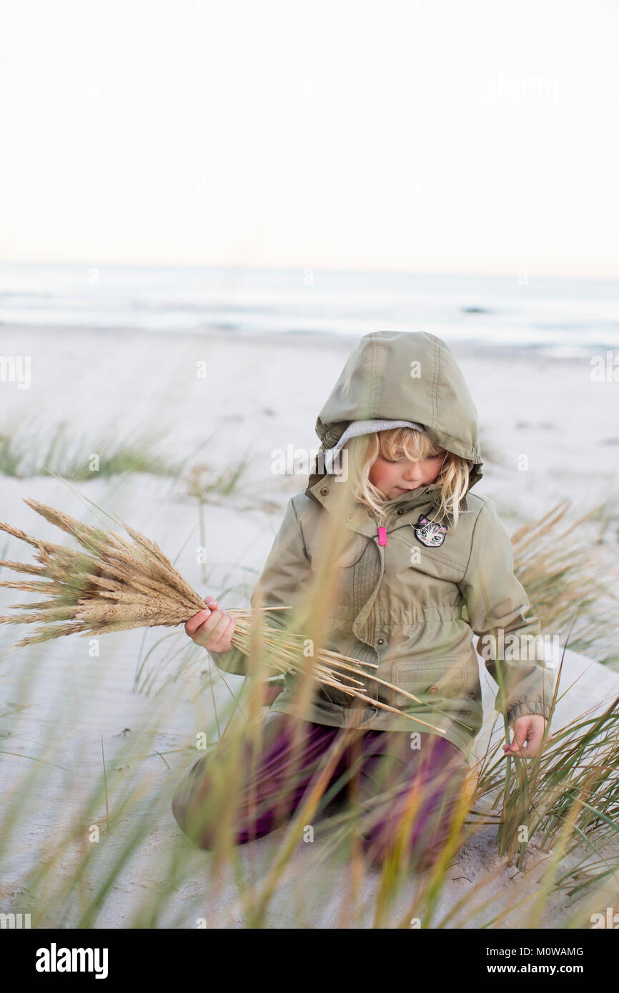 Niña jugando con hierba en Sandhammaren en Suecia Imagen De Stock