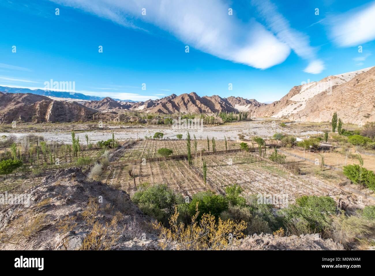Provincia de Catamarca,Argentina,Taton oasis cerca de Fiambala Imagen De Stock