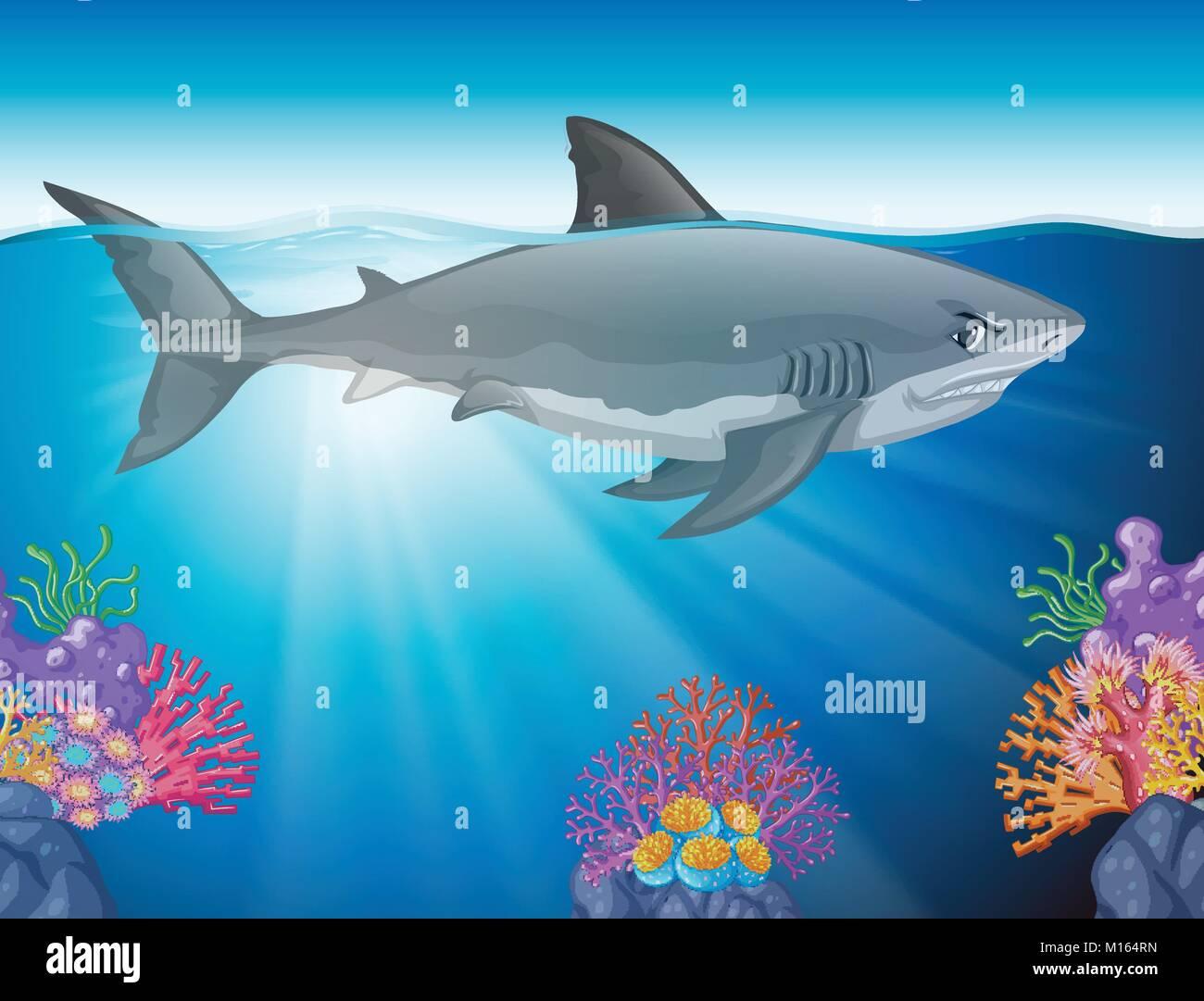 Lujoso Realista Gran Tiburón Blanco Para Colorear Foto - Dibujos ...