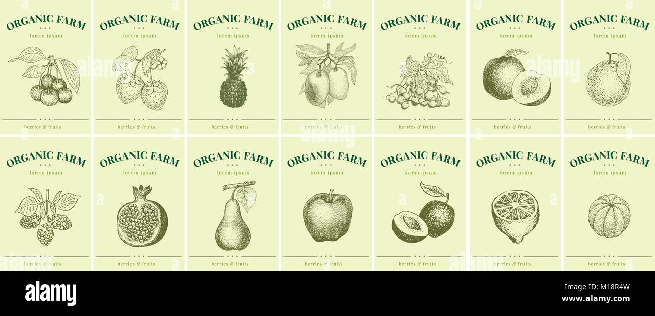 Etiquetas con frutas y bayas. Plantillas de conjuntos de etiquetas ...