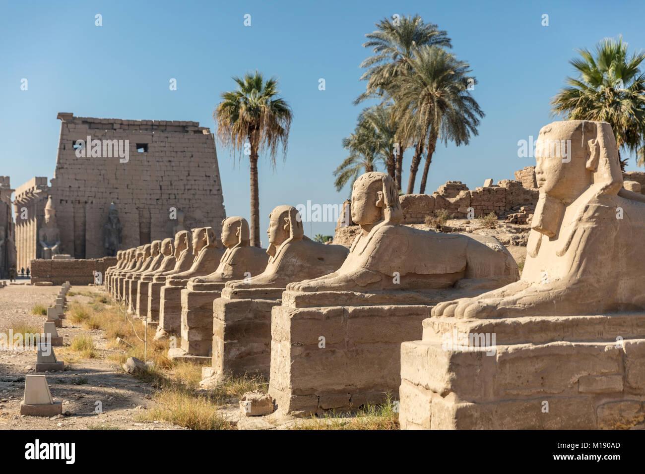 El Templo de Luxor, Luxor, Egipto Imagen De Stock