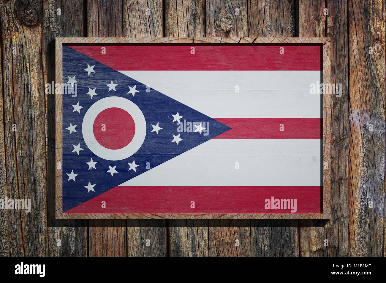 Encantador Marco De La Matrícula Del Estado De Ohio Bandera - Ideas ...