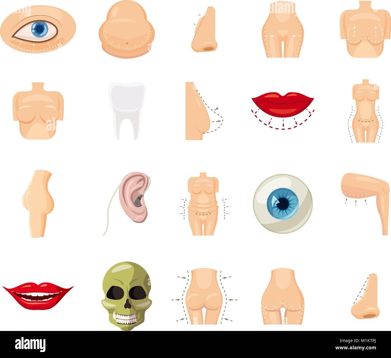El Cuerpo Humano El Conjunto De Iconos De Estilo De Dibujos