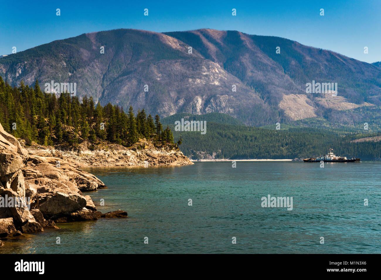 Selkirk montañas cubiertas con bosques de pinos muertos, atacados por Mountain Pine escarabajos, flecha superior, al oeste del Lago Kootenay, British Columbia, Canadá Foto de stock