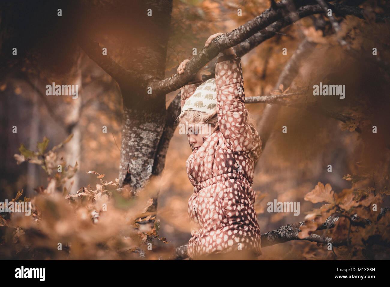Chica colgando de un árbol en Rama Sodermanland, Suecia Imagen De Stock