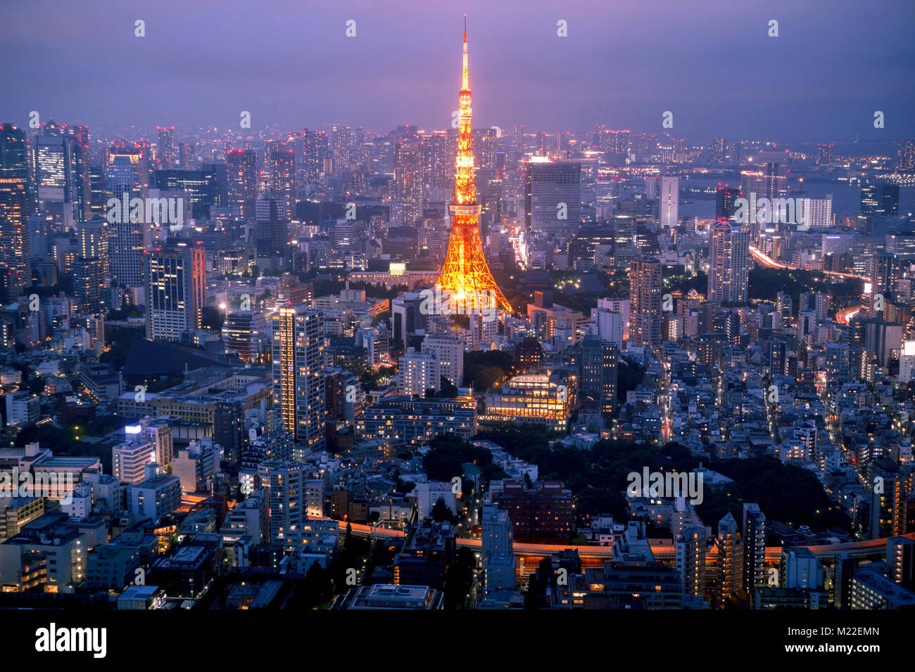 Horizonte de Tokio al atardecer, con la famosa torre de Tokyo. Foto de stock