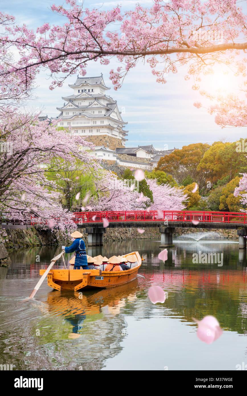 El Castillo de Himeji con hermosa flor de cerezo en primavera en la provincia de Hyogo, cerca de Osaka, Japón. Imagen De Stock