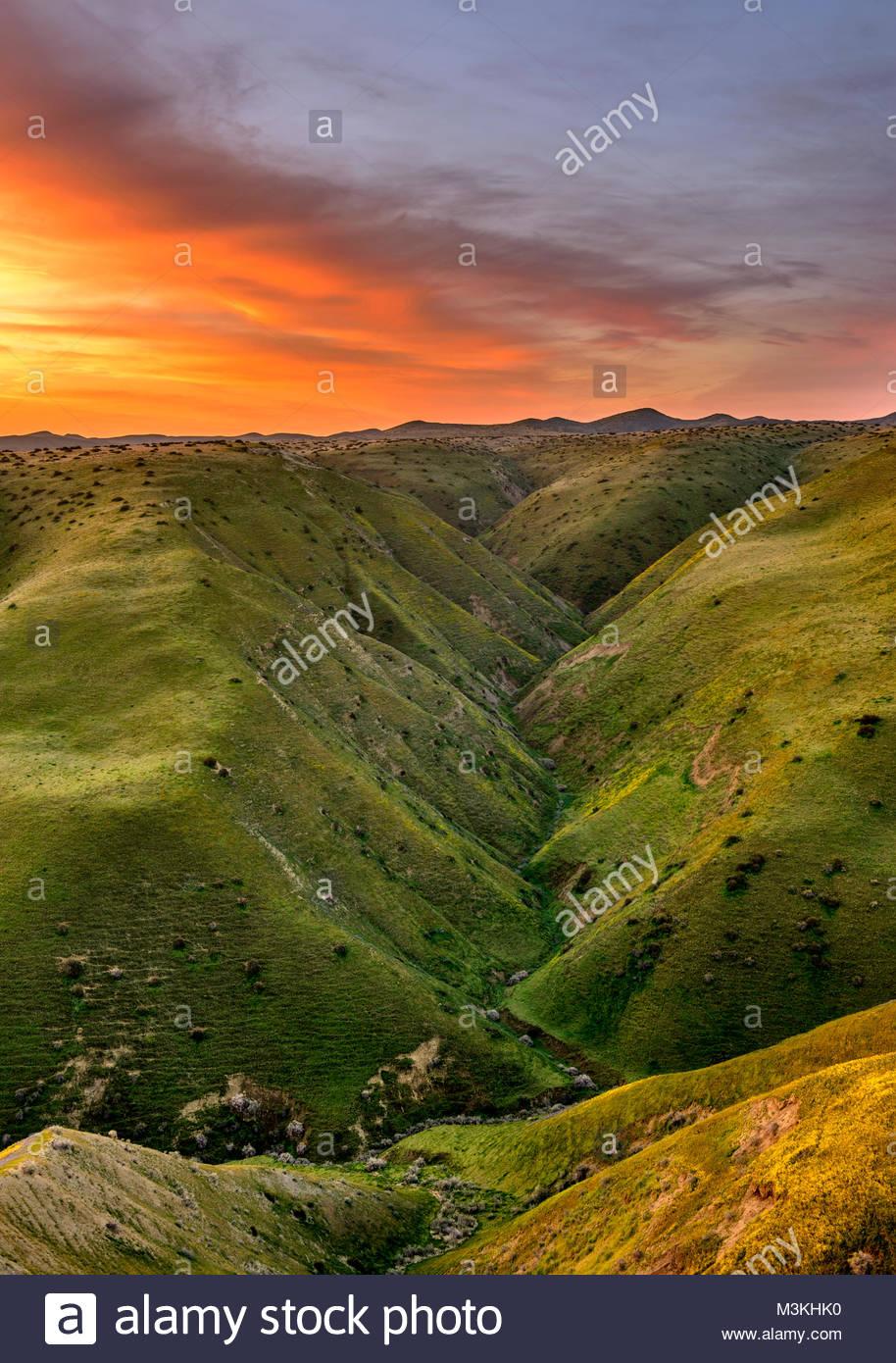Panoche colinas Desierto Área de estudio antes del amanecer, el condado de Fresno, California Imagen De Stock