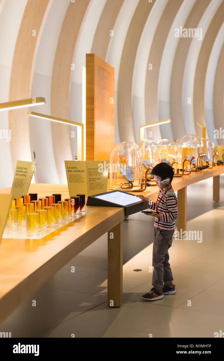 Chico en el museo Imagen De Stock