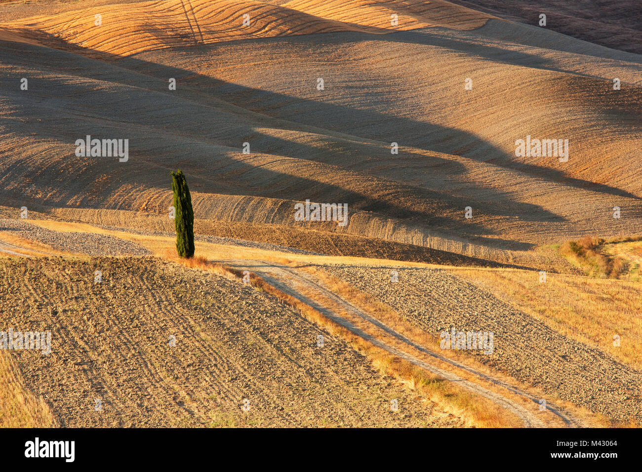 Europa, Italia, Toscana, Siena,distrito Valle de Orcia. Foto de stock
