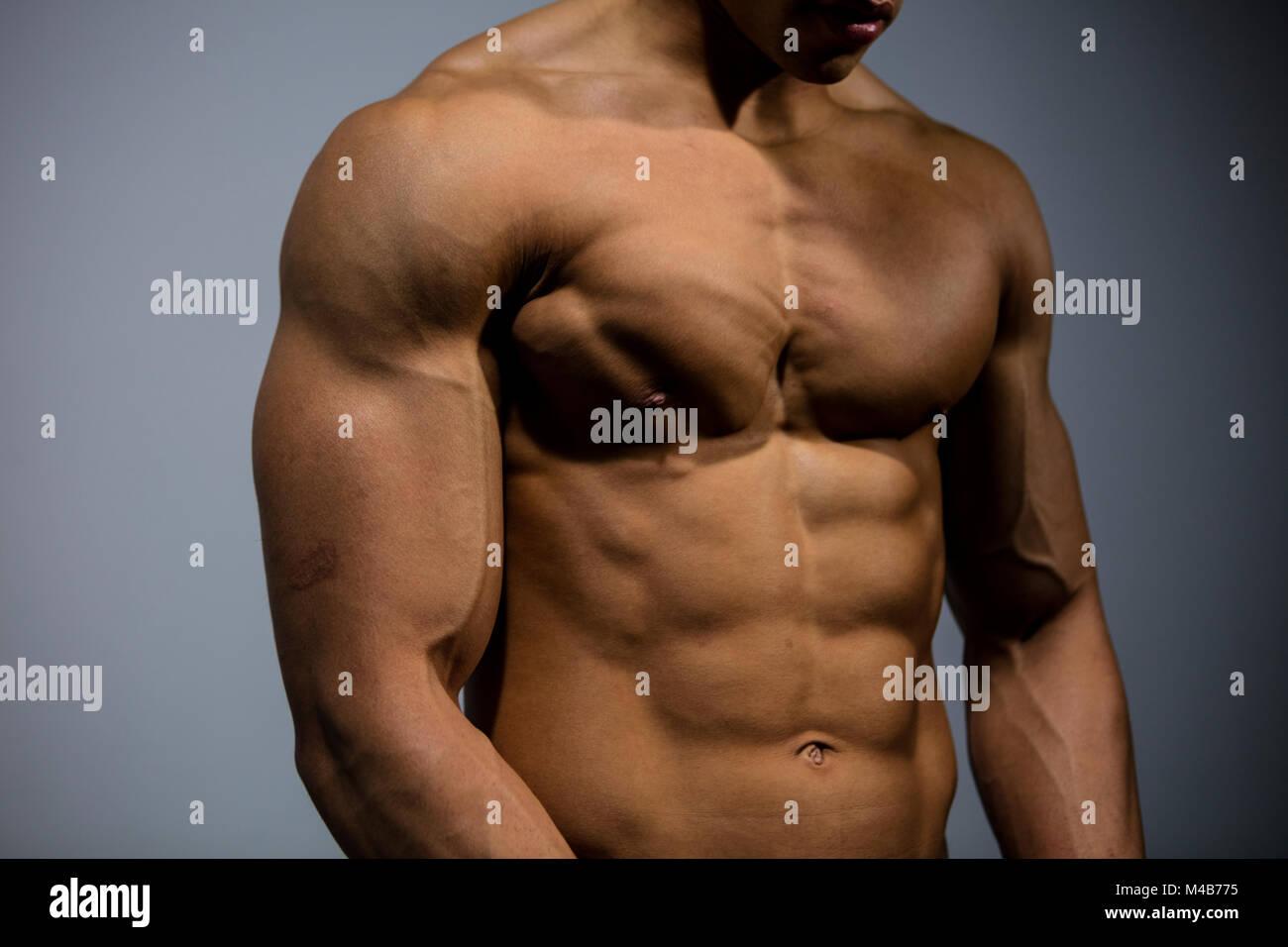 Human Chest Muscles Imágenes De Stock & Human Chest Muscles Fotos De ...