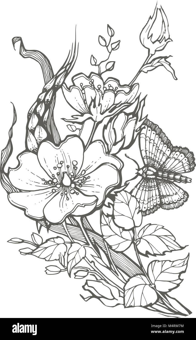 Perro Salvaje Rosas Flores Con Mariposas Dibujo Clipart Vectorial