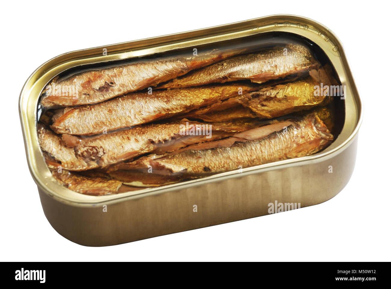 Lata de pescado Foto de stock