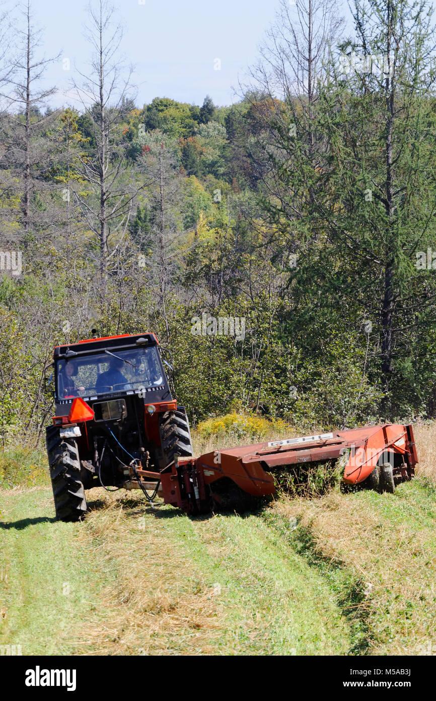 Quebec, Canadá. Tractor agrícola de cosecha de grano de corte Foto de stock