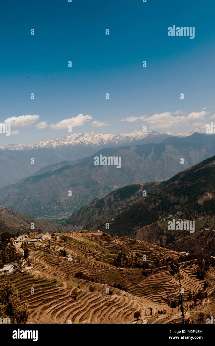 El Sistema De Cultivo En Terrazas La Chamba Himachal