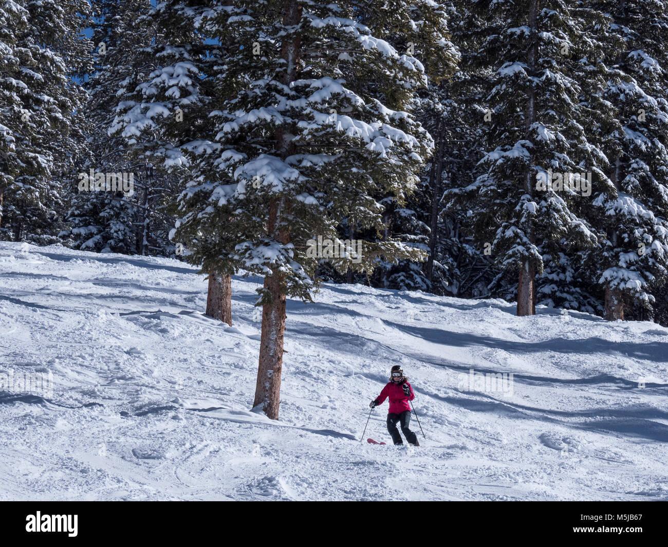 Esquiador esquís Star trail, invierno, Blue Sky Basin, Estación de Esquí de Vail, Vail, Colorado. Imagen De Stock
