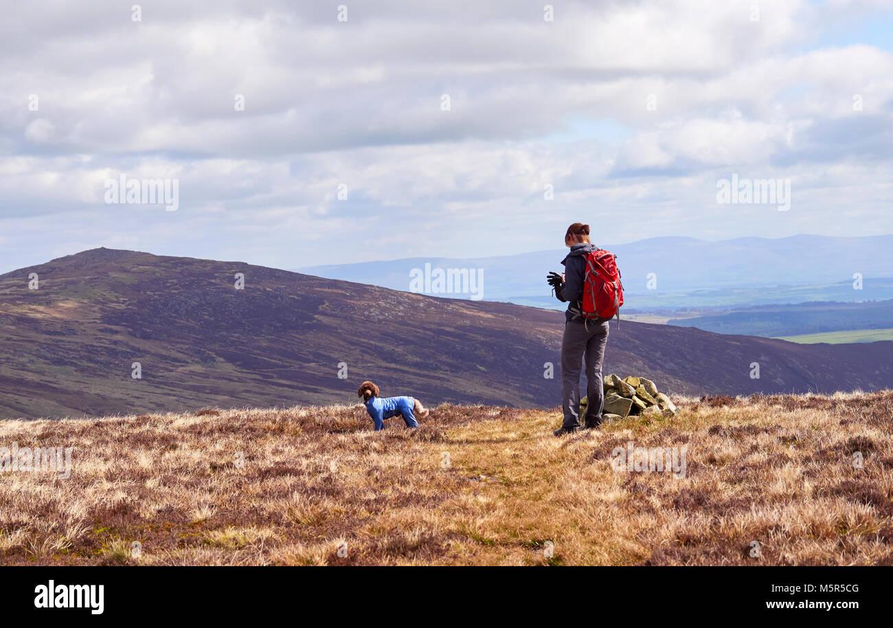 Un excursionista comprobando su posición sobre un mapa GPS en el Cairn marcado Coomb altura en el distrito Imagen De Stock