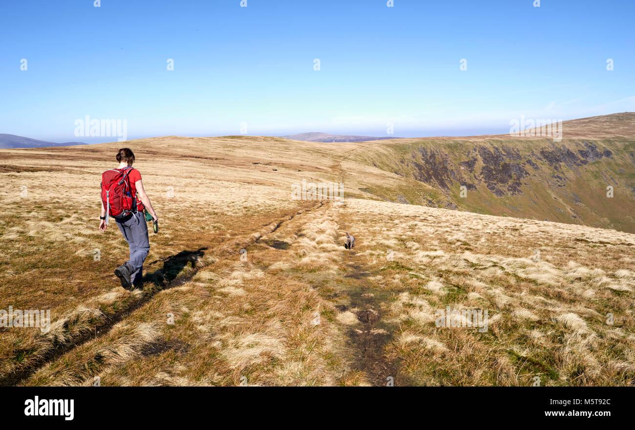 Una mujer caminante caminando hacia Bowscale cayó en el distrito inglés de Lake District, en el Reino Imagen De Stock