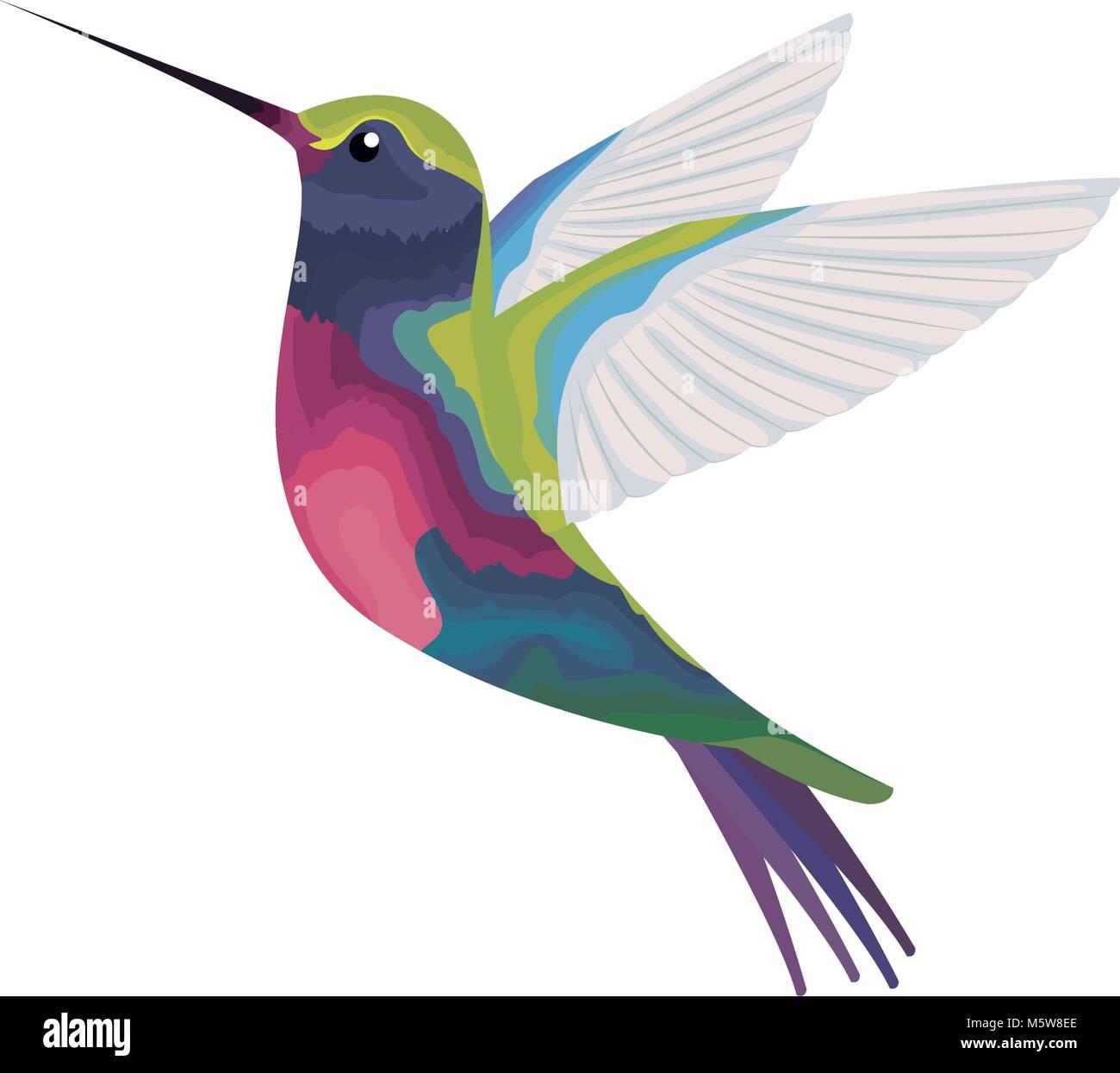 Encantador Lindo Colibrí Para Colorear Imágenes - Enmarcado Para ...