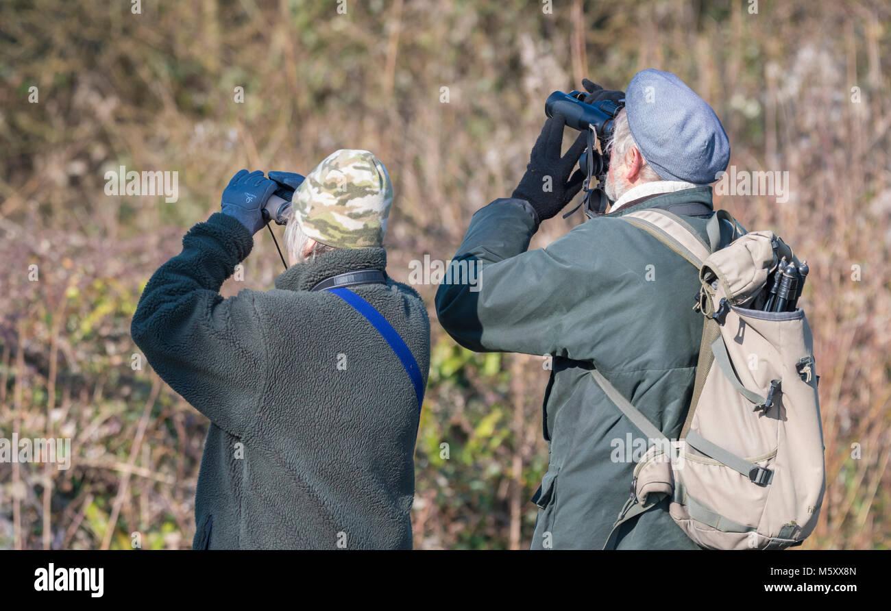 Pareja de ancianos birdwatching mirando a través de binoculares. Birdwatchers superiores en el Reino Unido. Imagen De Stock